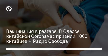Вакцинация в разгаре. В Одессе китайской CoronaVac привили 1000 китайцев – Радио Свобода